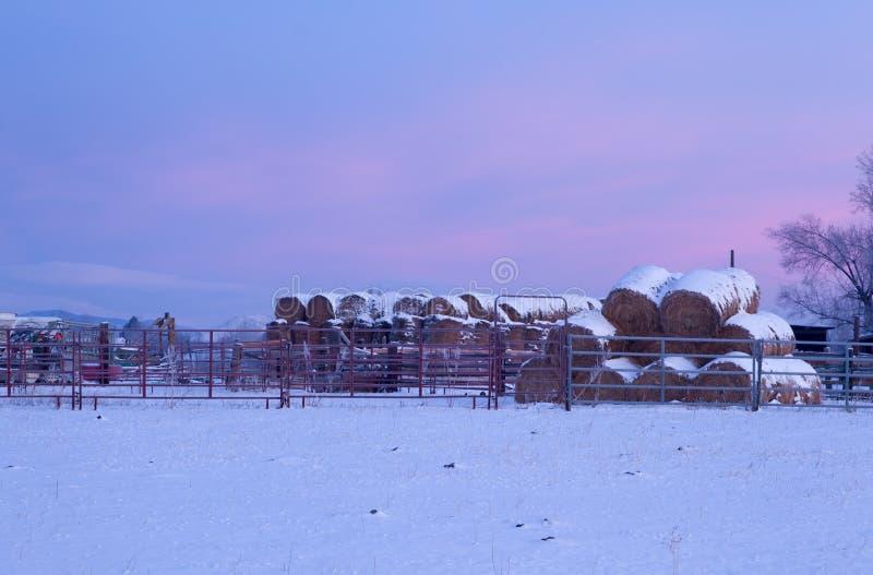 Staplungsballen Heu bedeckt im Schnee bei Sonnenaufgang stockbild