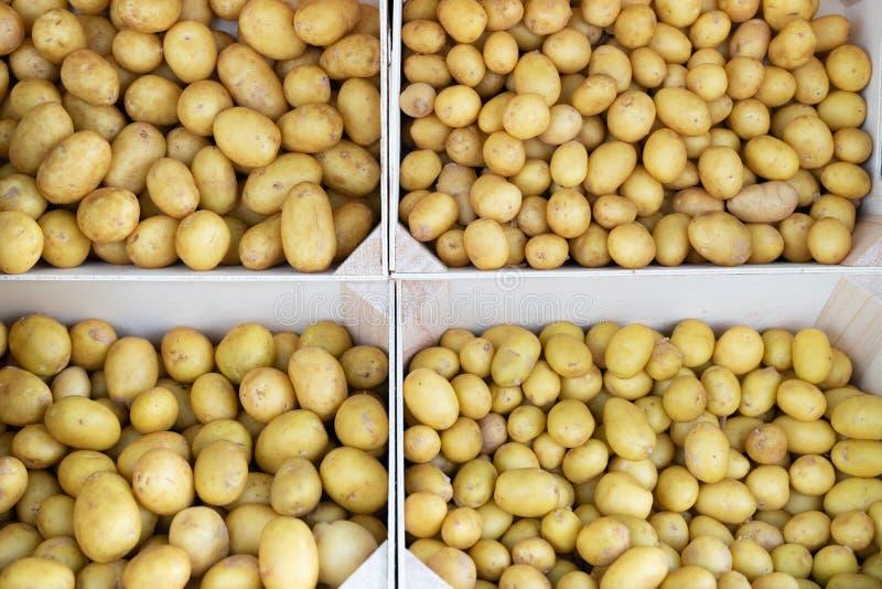 Staplungskisten frische geerntete Kartoffeln im Markt für Verkauf in Ile de Ré Frankreich für Hintergrund lizenzfreies stockbild