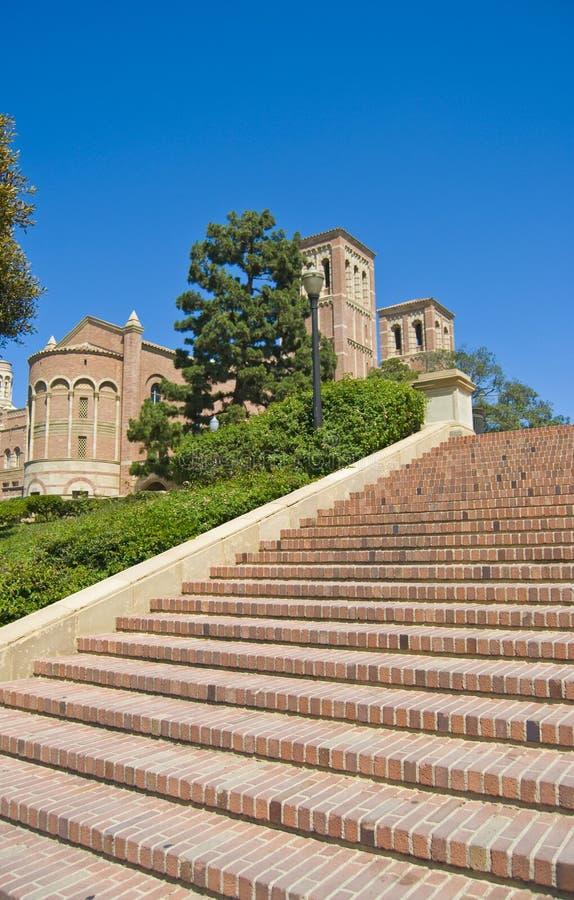 Stappen bij Universitaire campus stock fotografie