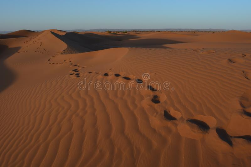 Stappen op de woestijn van de Sahara royalty-vrije stock afbeeldingen