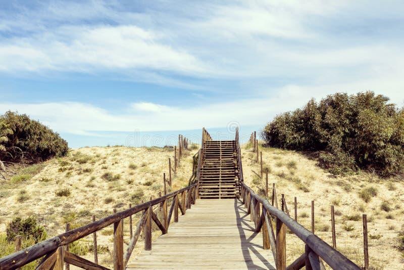 Stappen voor strandtoegang op zandduinen royalty-vrije stock afbeelding