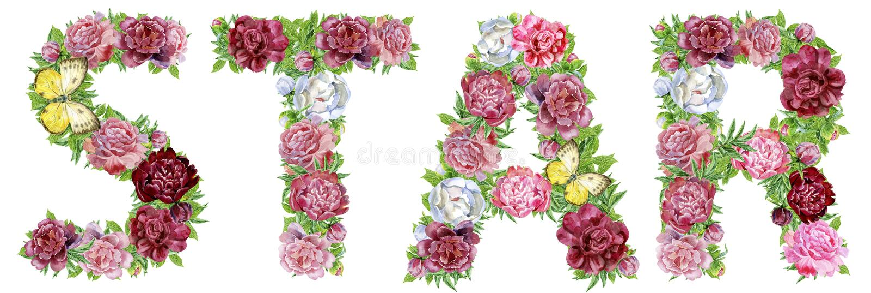 STAR λέξης των λουλουδιών watercolor απεικόνιση αποθεμάτων