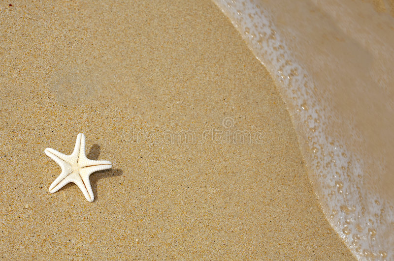 Star Stock Images