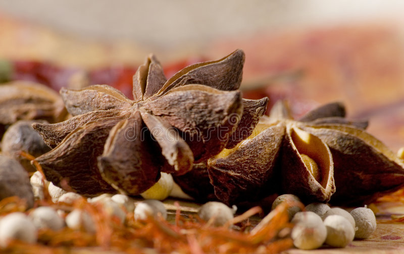 Star anice and other spices stock image