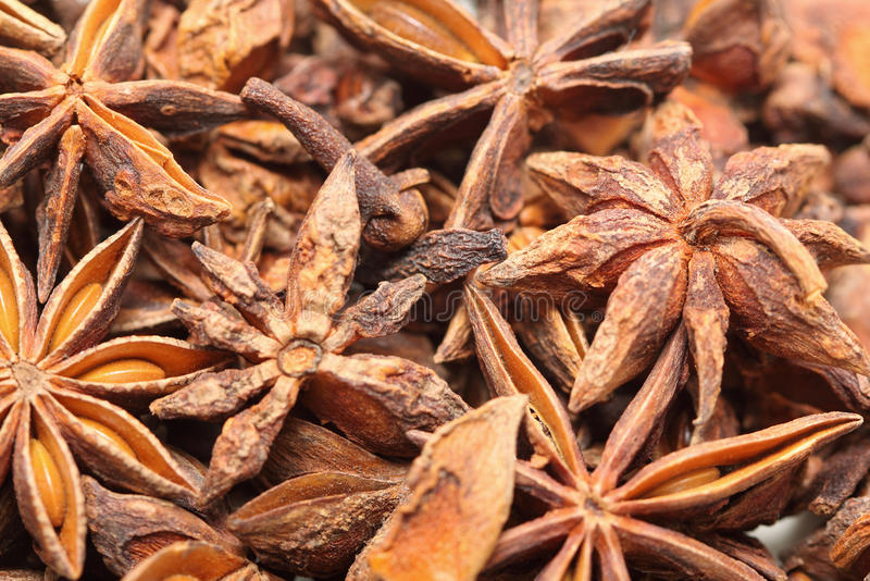 Download Star Anise Royalty Free Stock Photo - Image: 10395845