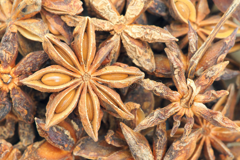 Download Star anise stock image. Image of close, eating, food - 28056567
