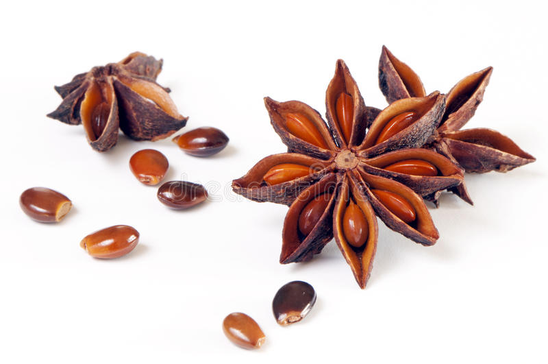 Star anise, star aniseed, or Chinese star anise stock photo