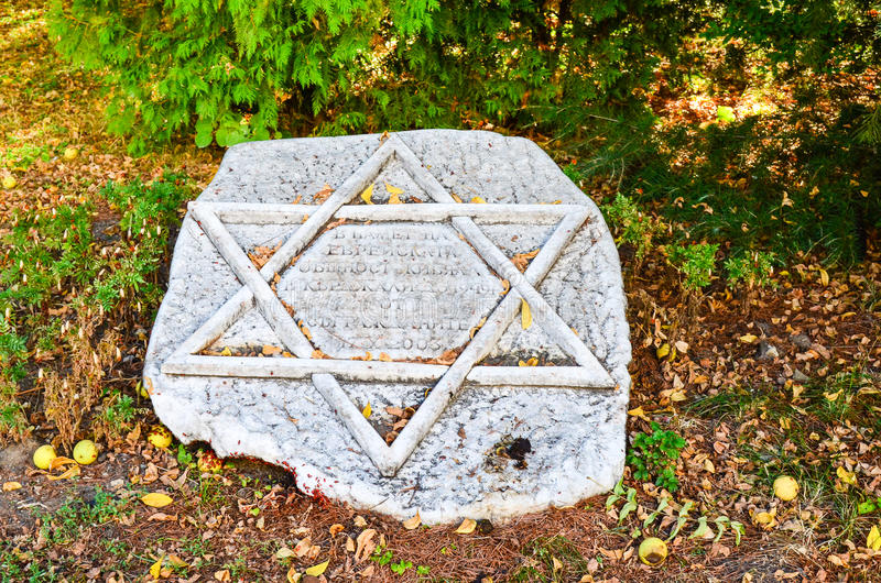 Star of David. The religious symbol representing judaism, the jewish faith.- Star of David on stone in the autumn royalty free stock photography