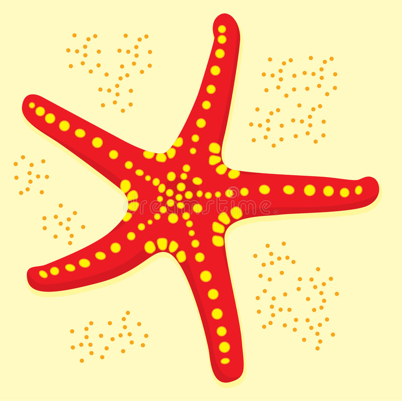 Download Star fish stock vector. Image of clip, beauty, symbol - 7204472