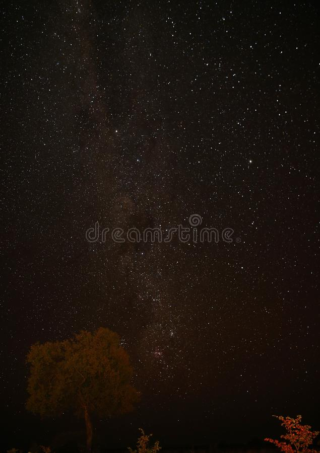 Star lite night in Central Africa Botswana with no light polution royalty free stock images