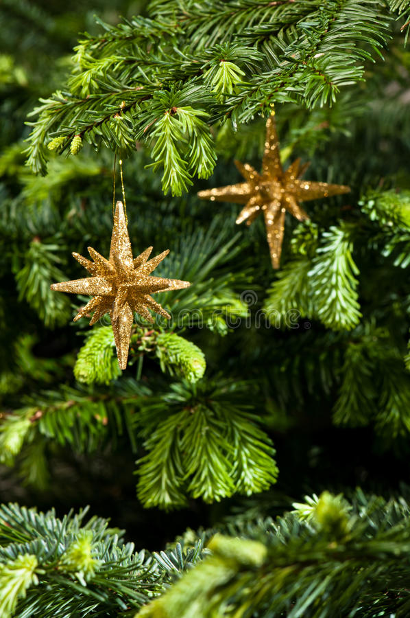 Download Star Shape Christmas Ornament In Gold Stock Photo - Image: 25383760