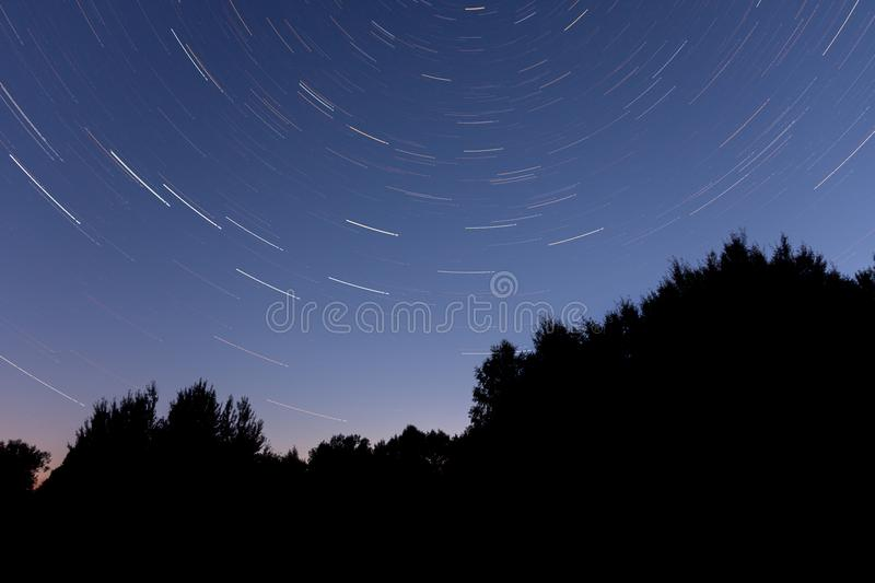 star trail over dark trees stock photography