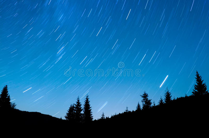 Download Star Trails stock image. Image of trails, star, forest - 20285261