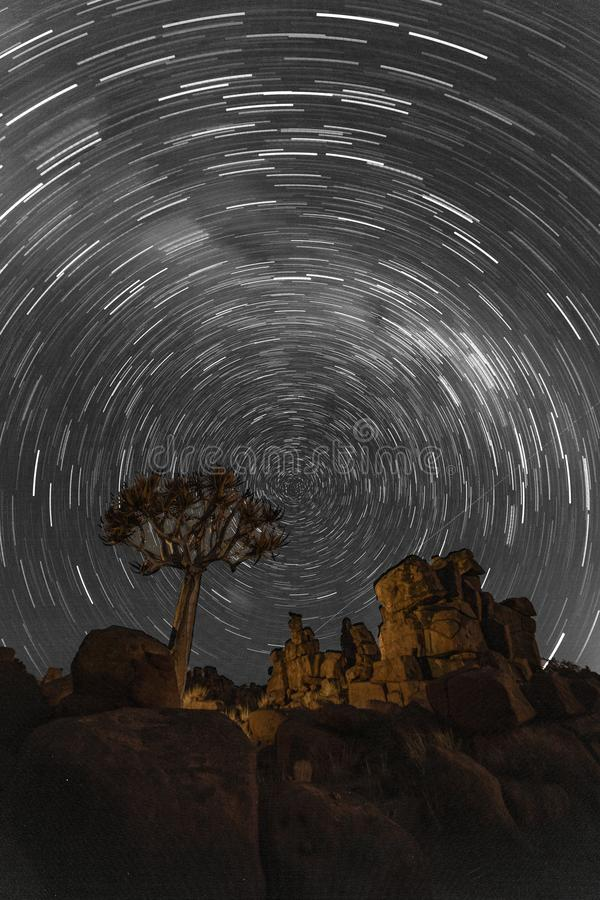 Star trails circle over quivertrees stock photography