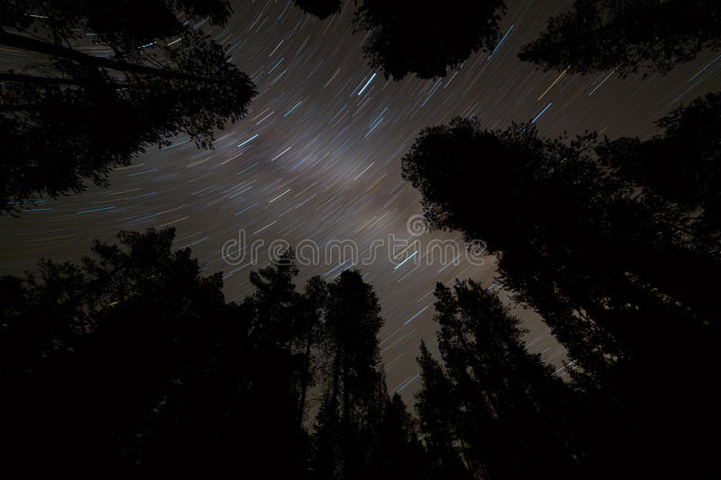 Star trails on a night sky with milky way galaxy and trees silho stock photography