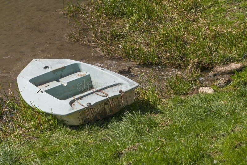 Stara łódź w trzcinie obrazy royalty free