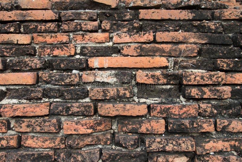 Stara ściana z cegieł tekstura w antycznym mieście Ayutthaya obraz royalty free