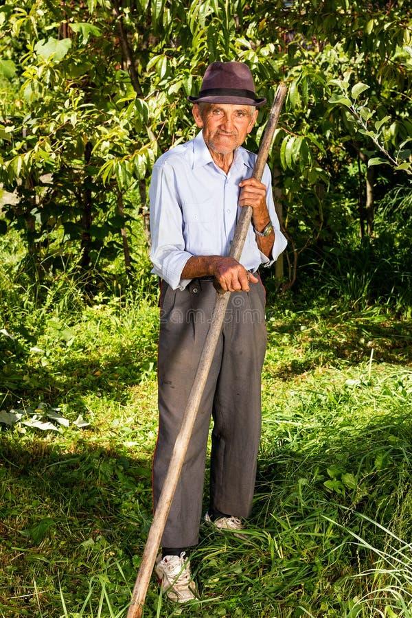 Stara średniorolna używa kosa kosić trawy fotografia royalty free