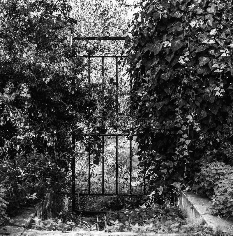 stara żelazna brama w czarny i biały obrazy stock
