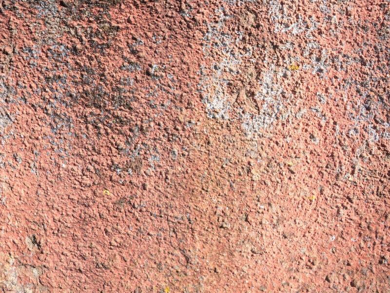 Stara betonowa szorstka ścienna tekstura z menchiami maluje i liszaj zdjęcie royalty free