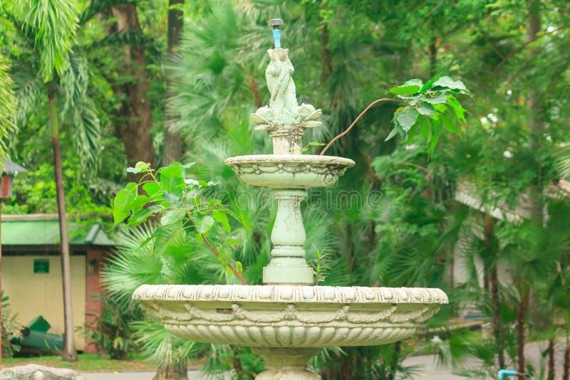 Stara bia?a fontanna w parku zdjęcia royalty free