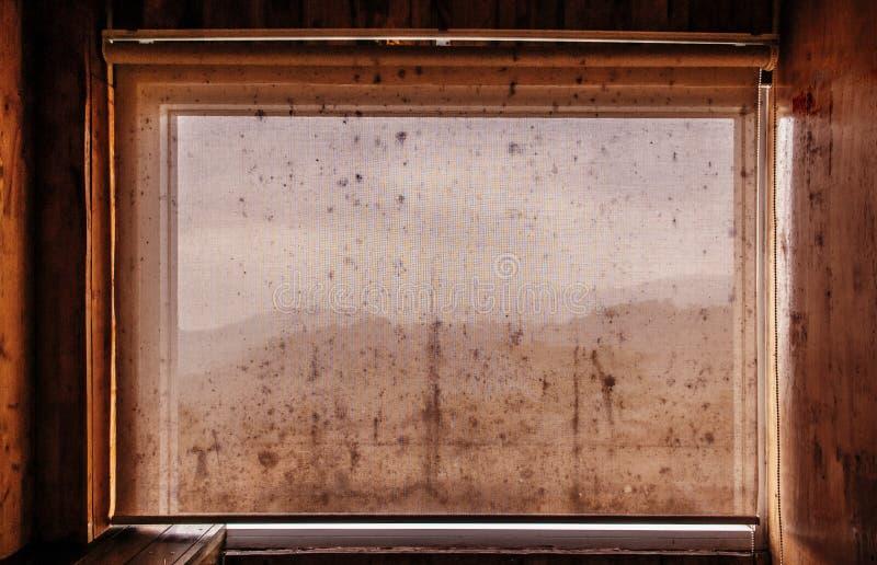 Stara brudna grunge zasłona w drewnianej kabinie z czarnym foremka grzybem obrazy royalty free