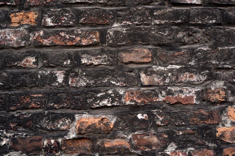 stara ceglana ściana Rocznik niszczący cementowy ściany z cegieł grunge Szary ściana z cegieł cementu tekstury tło Rocznik czerwi obrazy royalty free