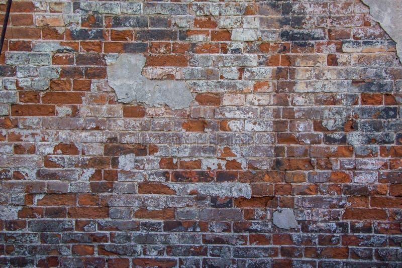 stara ceglana ściana Tło obrazy stock