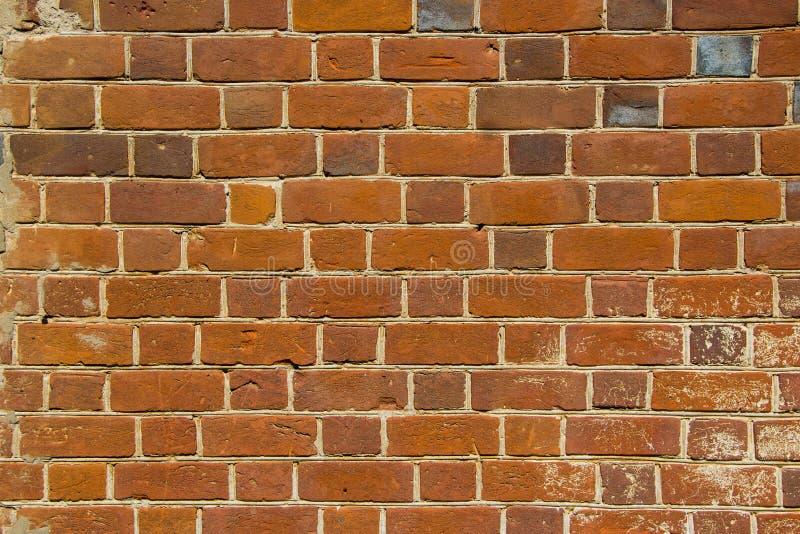 stara ceglana ściana Tło zdjęcia royalty free