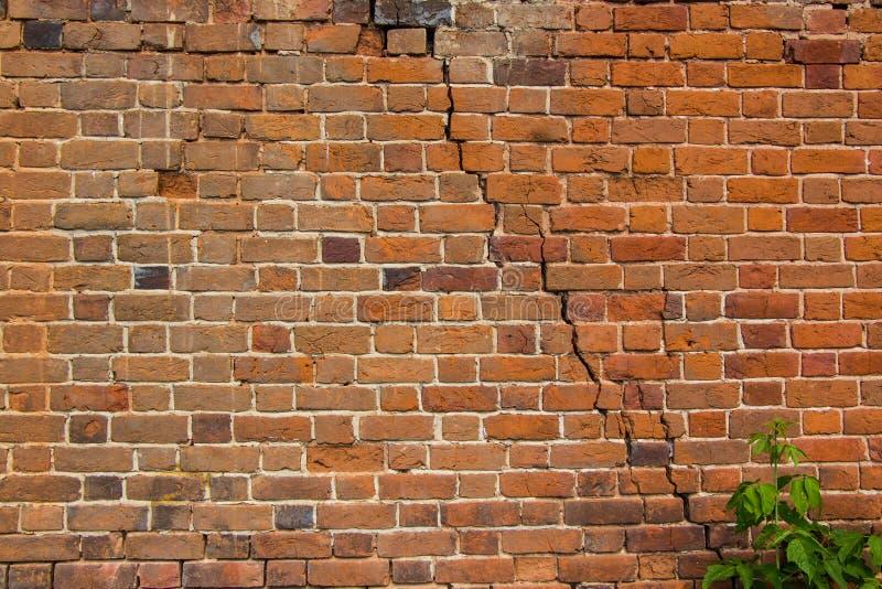 stara ceglana ściana Tło zdjęcie royalty free
