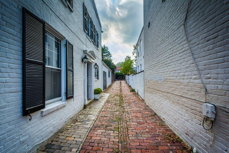 Stara ceglana aleja w Starym miasteczku Aleksandria, Virginia zdjęcia stock