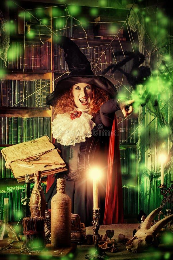 stara czarownica zdjęcia stock