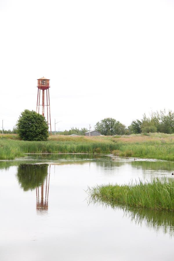 Stara czerwonej wody piłka w polu z odbiciem w stawie fotografia royalty free