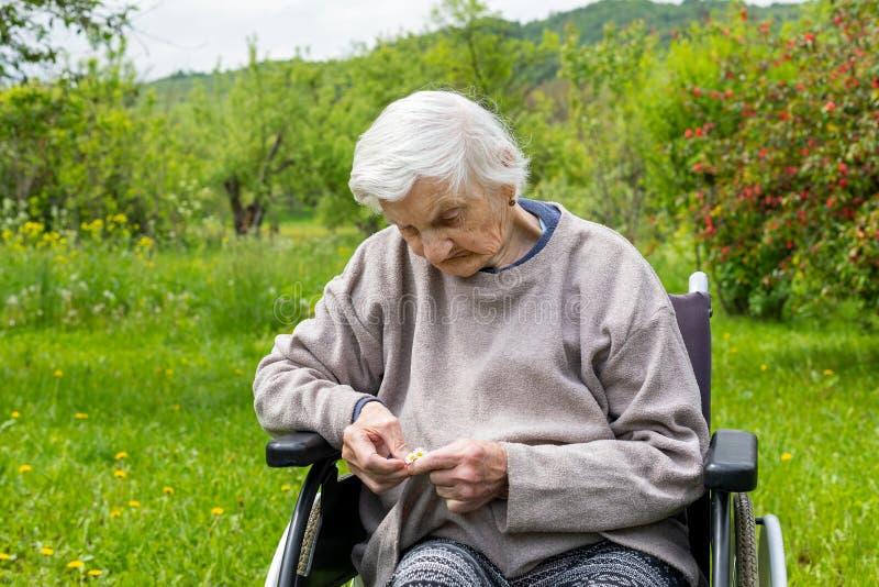 Stara dama w w?zku inwalidzkim zdjęcie royalty free
