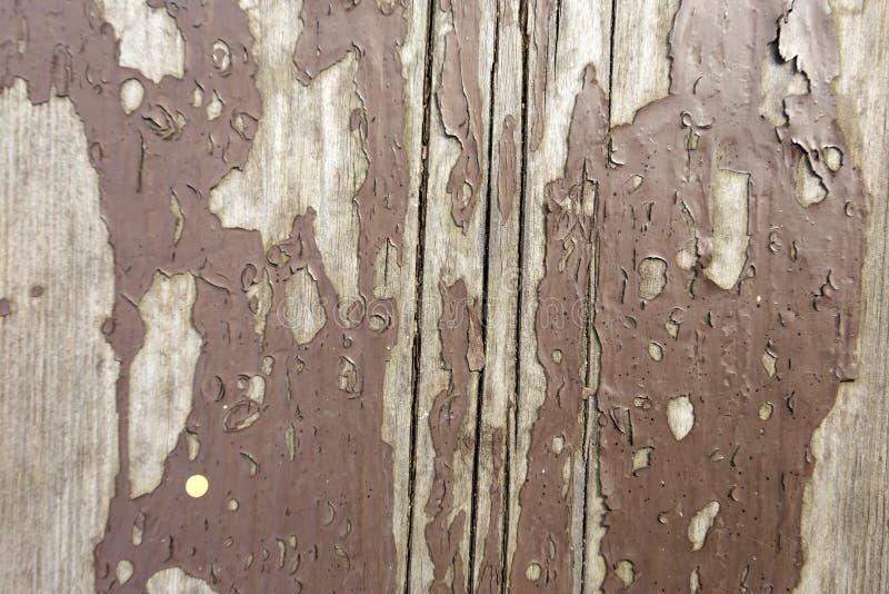 Stara deska, drewniana tekstura obrazy royalty free