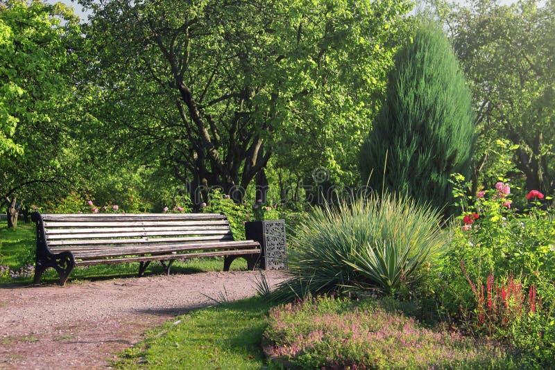 Stara drewniana ławka w lato ogródzie Piękny park w kwiacie obraz royalty free