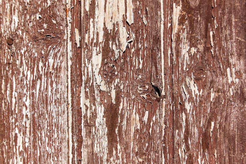 Stara drewniana obieranie deska Stary br?z maluj?cy zaszaluje na domowej ?cianie Stary kolor Pogoda skutki na drewnianym narzucie obrazy stock