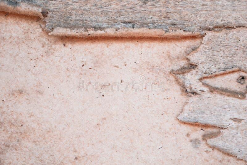 Stara dykta wsiada butwieje i drzeje obraz stock