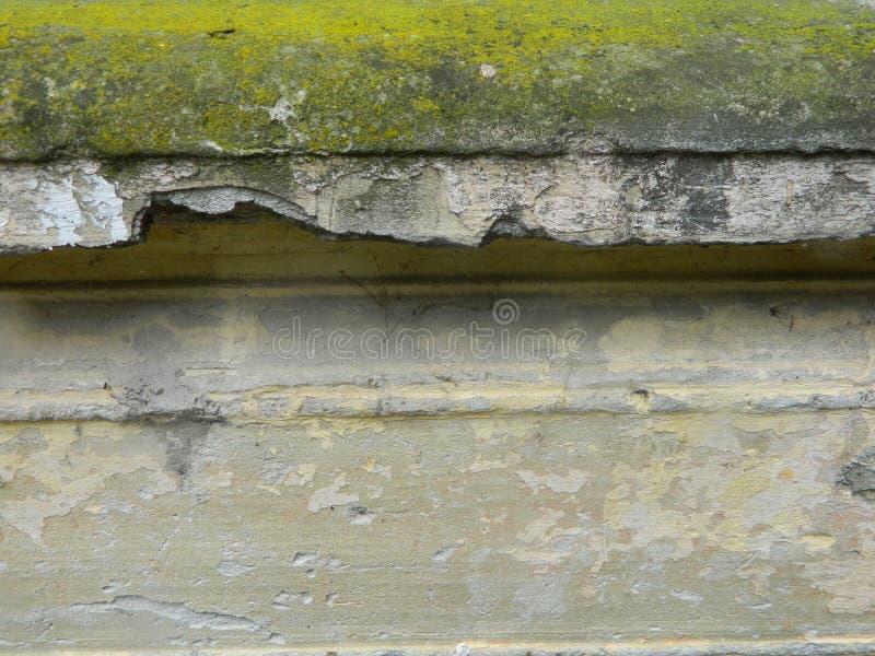 Stara fasada z liszajami obraz stock