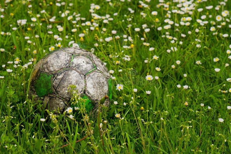 Stara futbolowa piłka chująca w kwiacie segregujących wysokiej trawy świrzepie i zdjęcie stock