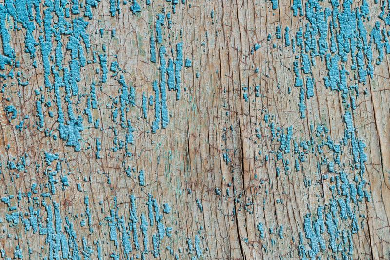 Stara i obierająca farba Z czasem niebieska farba oderwała się od starych płyt i pękła tekstura drewna Wina obrazy stock
