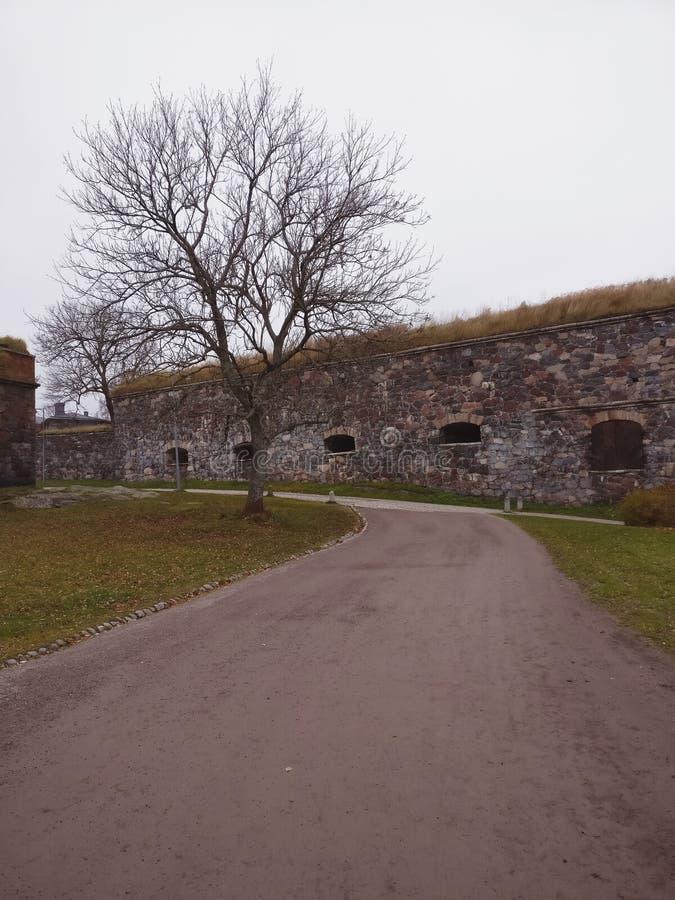 Stara kamienna ściana w jesień parku obrazy stock
