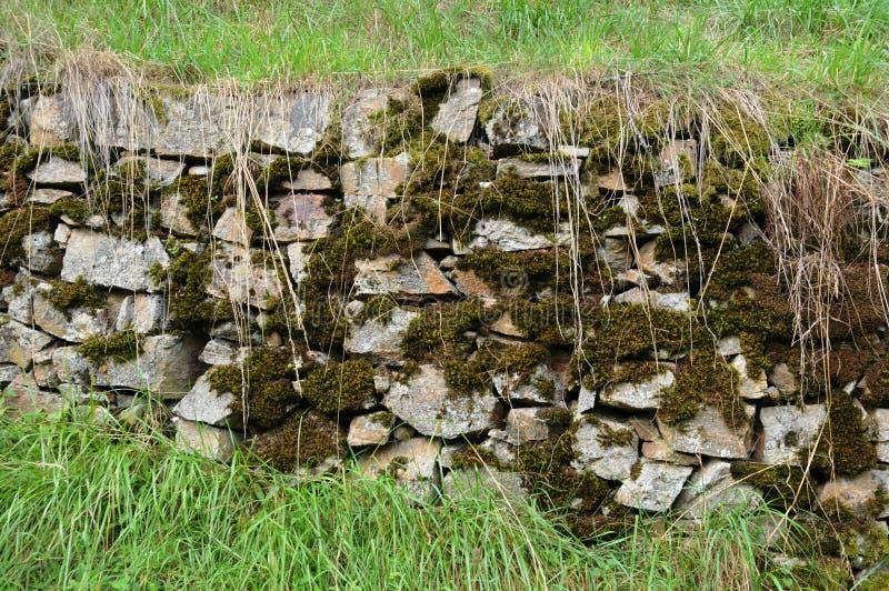 Stara kamienna ściana z mech zdjęcie stock
