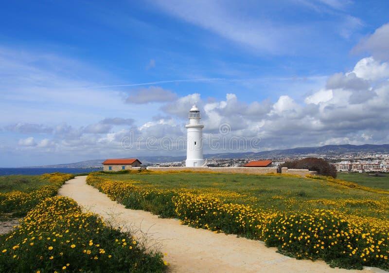 Stara latarnia morska w paphos ciborze otaczającej historycznymi budynkami z wiosną kwitnie przy ścieżka prowadzi morze obraz royalty free