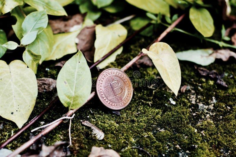 Stara mosiężna bitcoin moneta fotografia stock