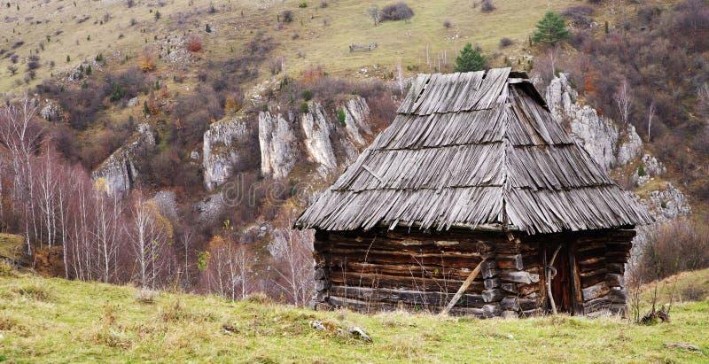 Stara nieociosana drewniana chałupa zamieszkująca bacami podczas lata w Carpathians, Fundatura Ponorului zdjęcia royalty free
