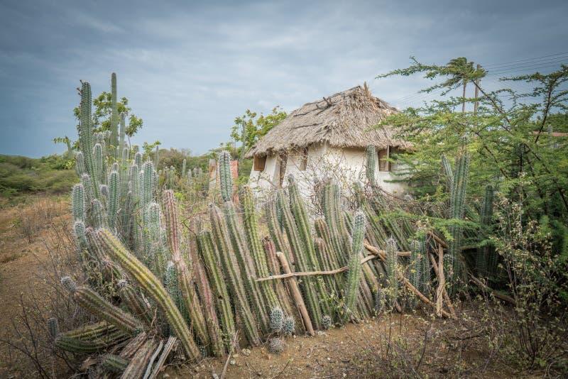 Stara Niewolnicza buda - kaktusa Curacao płotowi widoki obraz royalty free