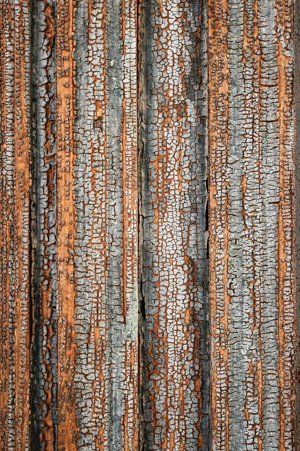 Stara obrana barwiona farba na drewnie zdjęcia stock