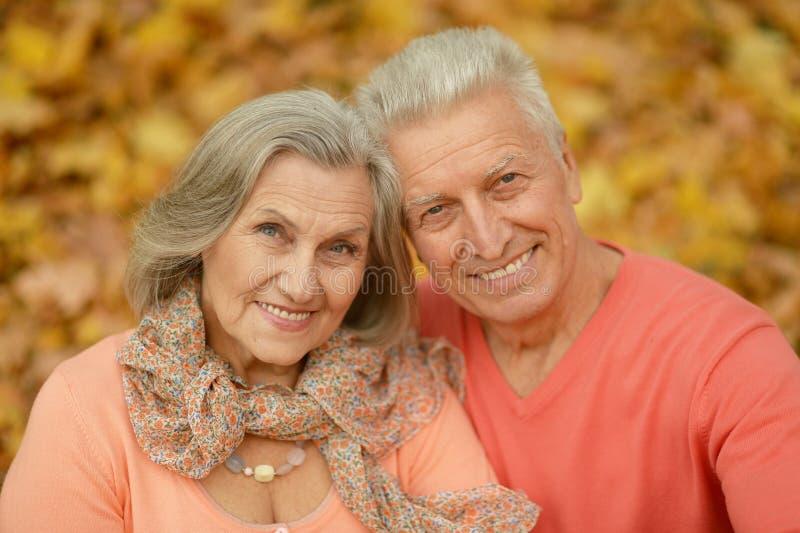Stara para przy jesień parkiem obrazy stock