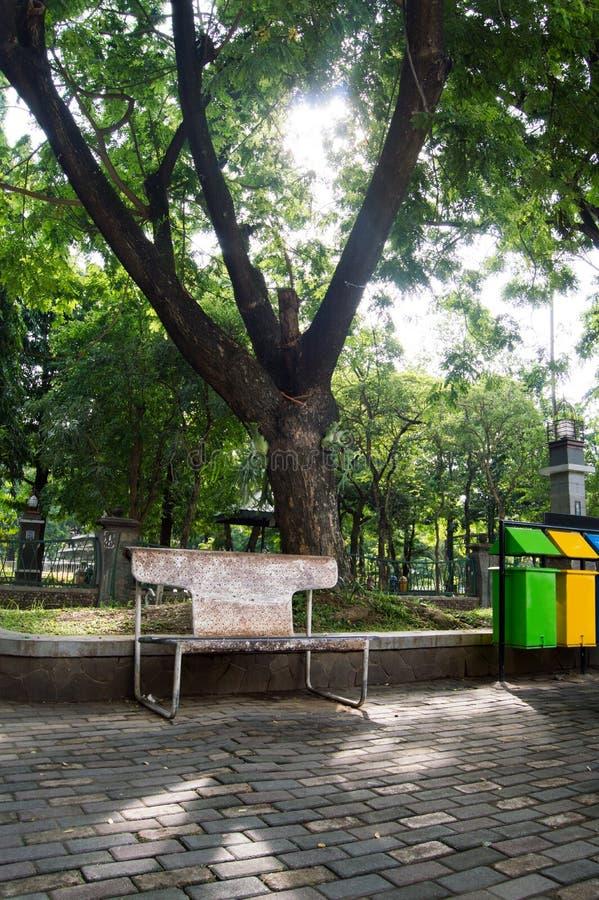 Stara parkowa ławka rdzewieje pod drzewem obraz stock